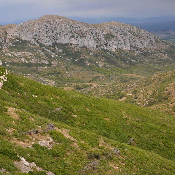 Turisme de naturalesa: Illes Medes, el Montgrí i Les Gavarres